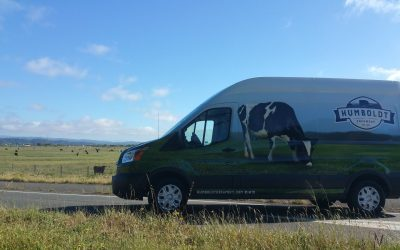 Amazing weather and great cows: The Magic Recipe for Humboldt Organic Ice Cream